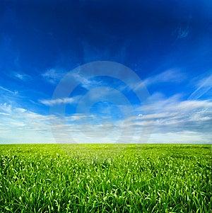 Idyllic Landscape Royalty Free Stock Photography - Image: 8610767