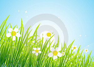 Spring Meadow Beautiful Stock Image - Image: 8611301