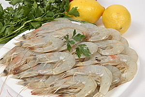 Shrimp Stock Image - Image: 8612861