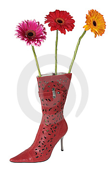 Three Flowers In A Boot Stock Image - Image: 8612871