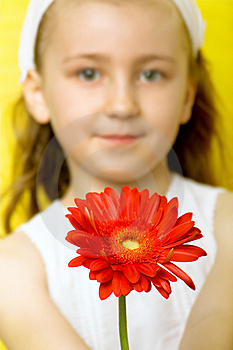 Little Smiling Girl With Flowers Royalty Free Stock Image - Image: 8613466
