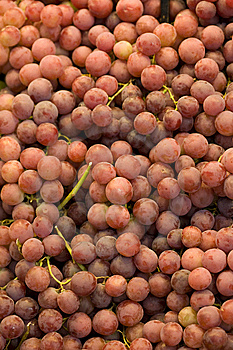 Grapes Stock Image - Image: 8615401