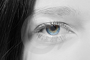 Colour Eye Stock Images - Image: 8617454