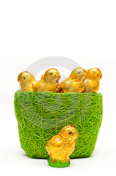 Easter Chocolate Chickens In Grass-tidy Royalty Free Stock Photography - Image: 8619607