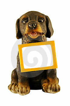 Dog With A Message Stock Images - Image: 8620214