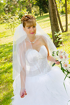 Pretty Bride Royalty Free Stock Image - Image: 8620706