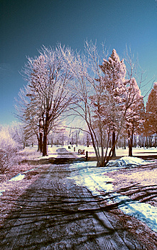 Infrared Landscape Stock Photos - Image: 8621583