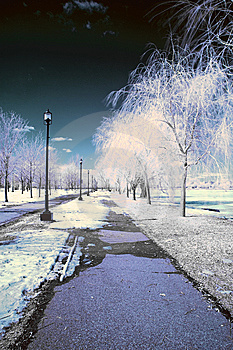 Infrared Landscape Royalty Free Stock Photo - Image: 8621795