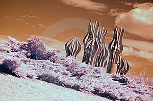 Infrared Landscape Stock Photo - Image: 8622010