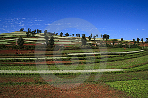 The Red Soil Of Dongchuan Stock Images - Image: 8623884