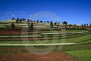 El Suelo Rojo De Dongchuan Imagenes de archivo - Imagen: 8623884