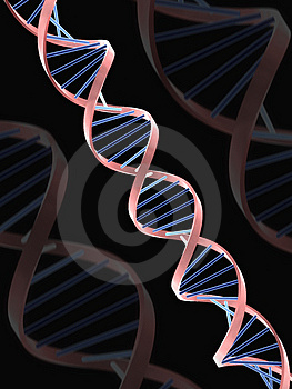 DNA Royalty Free Stock Photography - Image: 8624237