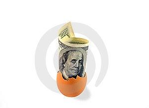 One Hundred Dollars In Egg Shell On White. Stock Photo - Image: 8625850