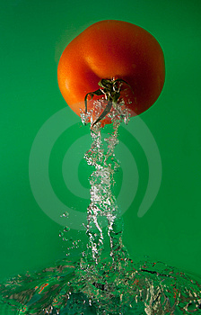 Tomato In Water Stock Photo - Image: 8627430