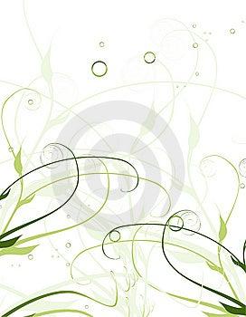 Fondo Floral Agradable Imagen de archivo - Imagen: 8628021