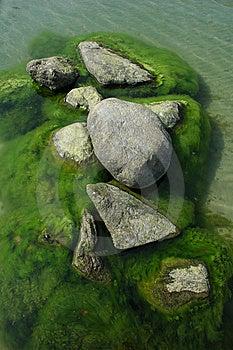 Roches Dans L'eau Avec L'algue Images stock - Image: 8628404