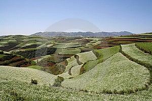 Il Suolo Rosso Di Dongchuan Fotografie Stock Libere da Diritti - Immagine: 8629058