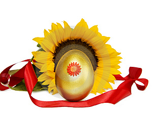 Easter Golden Egg And Sunflower With C/path Stock Image - Image: 8629761