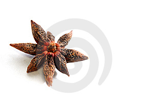 Isolated Anise Star Royalty Free Stock Images - Image: 8630319