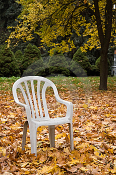 Neglected Park Stock Image - Image: 8630911