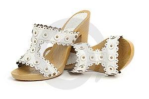 Paret Shoes Kvinnan Arkivbild - Bild: 8635422