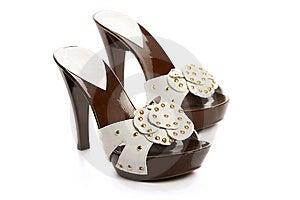 Nouvelles Chaussures De Femme Images libres de droits - Image: 8635669
