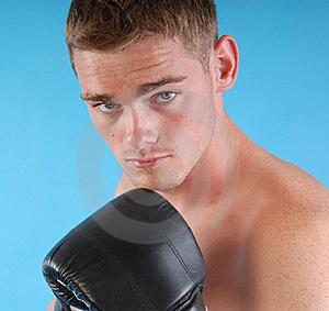 Portrait Of A Young Boxer Royalty Free Stock Photo - Image: 8635735