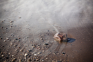 Long Exposure On The Sand Royalty Free Stock Photography - Image: 8635877