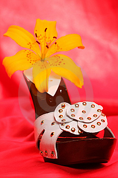 Woman Shoes On Satin Stock Photo - Image: 8635950