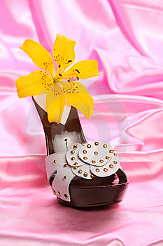 Woman Shoes On Satin Royalty Free Stock Photography - Image: 8635977
