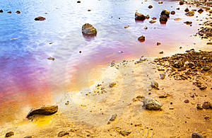 Colorful Lake Shore Royalty Free Stock Images - Image: 8635999