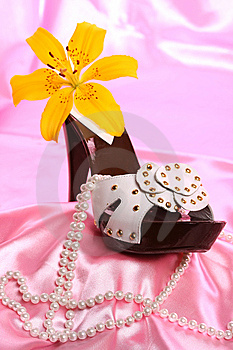Woman Shoes On Satin Stock Images - Image: 8636094