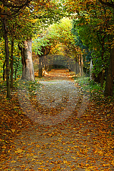 Autumn Park Royalty Free Stock Photos - Image: 8636118