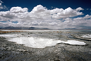 Salt Crust On A Lake In Bolivia,Bolivia Stock Image - Image: 8637561