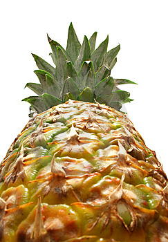 Pineapple Stock Photography - Image: 8639422