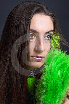 Green And Black Stock Images - Image: 8639724