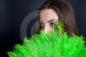 Green And Black Stock Images - Image: 8640214