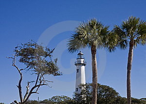 Lighthouse And Palm Trees Stock Photography - Image: 8641312