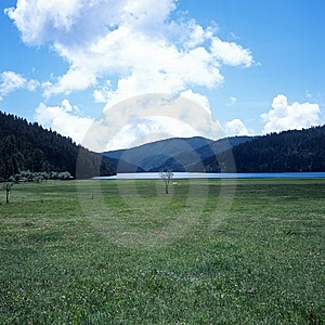 Shangri-La Grassland Royalty Free Stock Photos - Image: 8641358