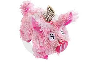 Roze Bont Geïsoleerd Spaarvarken Op Wit Stock Fotografie - Afbeelding: 8641422