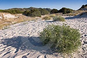 Sardinia Landscape Stock Images - Image: 8643734