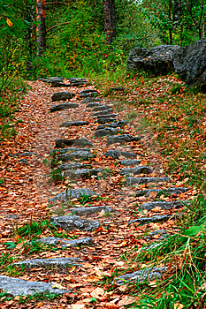 Stone Footpath Royalty Free Stock Image - Image: 8644856