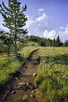 Ridge Hiking Path Stock Photography - Image: 8645242