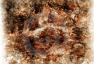 Brownish Grungy Background Stock Photography - Image: 8647252