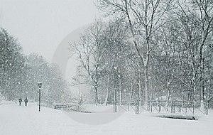 Winter Walk Stock Photo - Image: 8647280