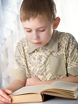 The Boy Stock Images - Image: 8647854