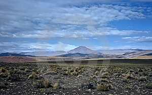 Wide Landscape In Bolivia,Bolivia Royalty Free Stock Photography - Image: 8649497