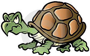 Terrapin Royalty Free Stock Images - Image: 8649869