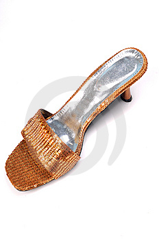 Ladies Footwear Stock Image - Image: 8649951