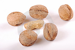 Nuts Stock Photography - Image: 8650262